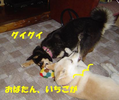 c0211642_19344168.jpg