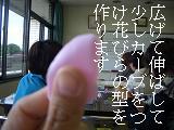 c0176172_1626355.jpg