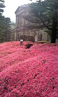 日本銀行_d0062076_1682027.jpg