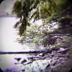 河のほとりで_f0235201_22211633.jpg