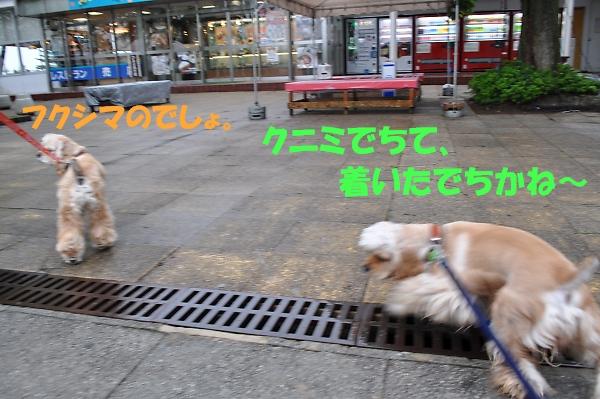 b0067012_1305752.jpg