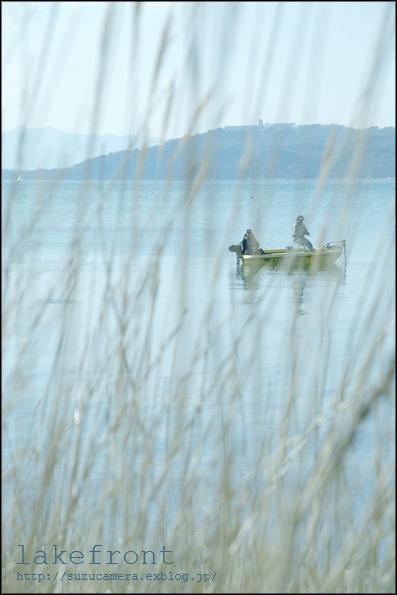 湖岸から見た風景_f0100215_0162347.jpg