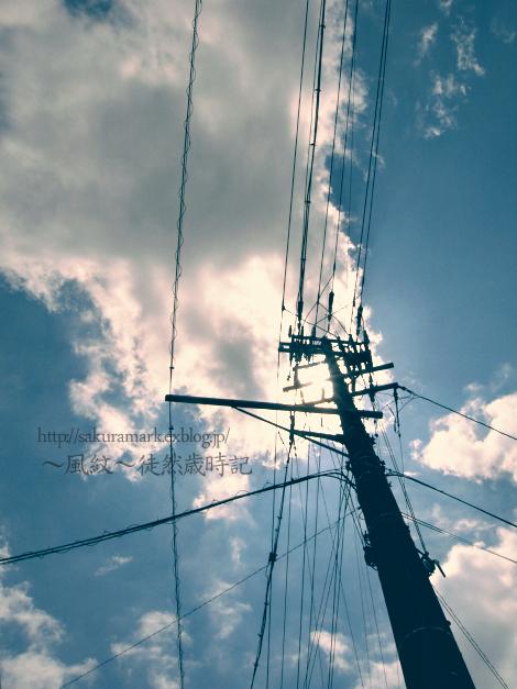 夕方には曇り・・・。_f0235723_180613.jpg
