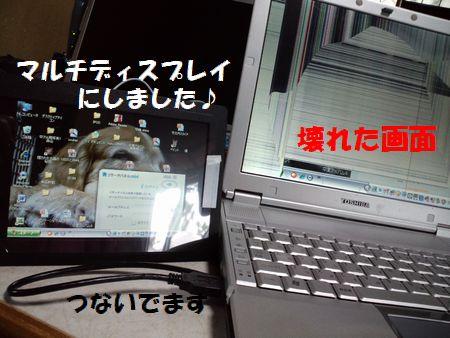 b0127531_19561916.jpg