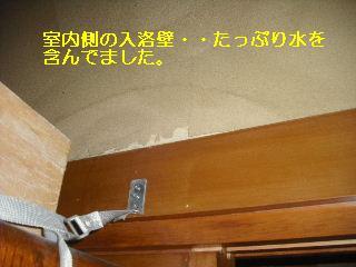 f0031037_20315117.jpg