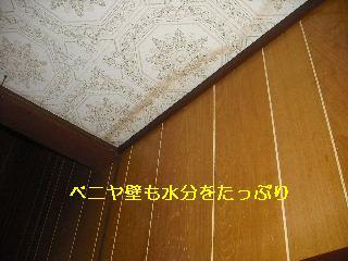 f0031037_2032155.jpg