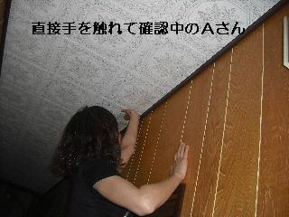 f0031037_20322017.jpg