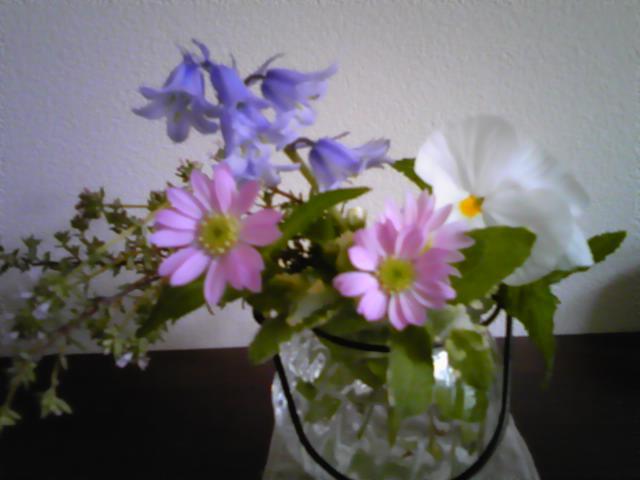 今日のお庭から_d0165645_14332763.jpg