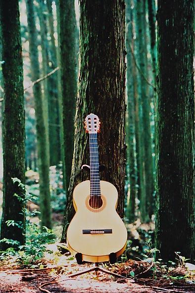 森の詩_e0156251_2295360.jpg