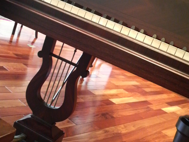 ショパンのピアノ_c0185356_1657784.jpg