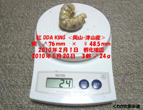 f0183484_1961418.jpg