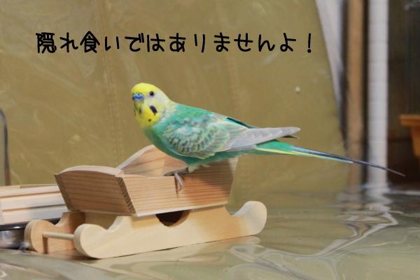 b0062090_03812.jpg