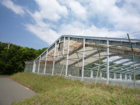 浅羽B&G海洋センター 近況3_c0184994_18244989.jpg