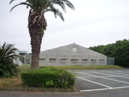 浅羽B&G海洋センター 近況3_c0184994_18302471.jpg