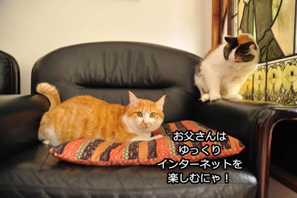 b0141397_9592011.jpg