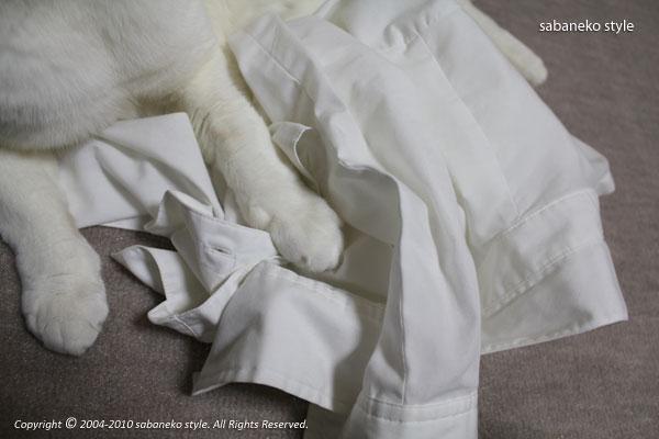 洗濯物好き_b0029706_1216435.jpg