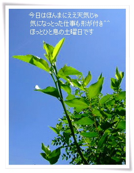 e0136420_19435637.jpg