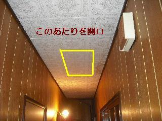 f0031037_20321835.jpg