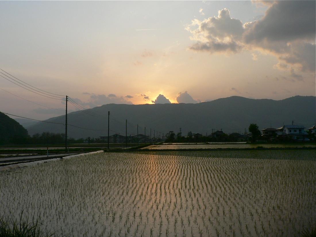 雨の夕焼け_d0001843_9303324.jpg