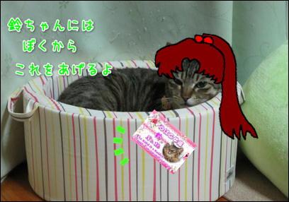 d0139352_022411.jpg