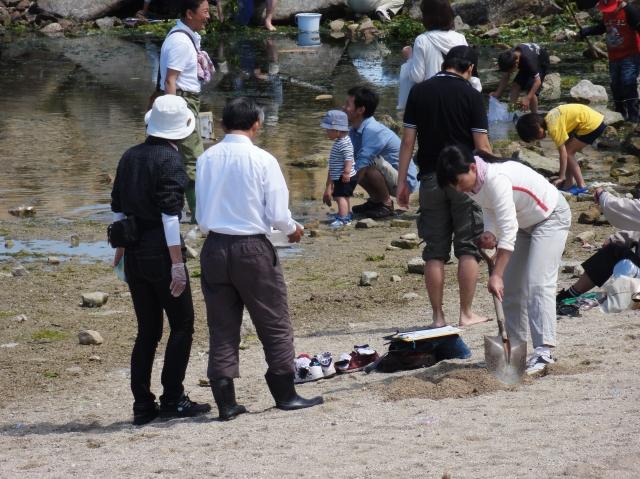 第3回大阪湾生き物一斉調査 in せんなん里海公園_c0108460_23272834.jpg