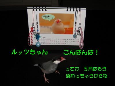 b0158061_2052539.jpg