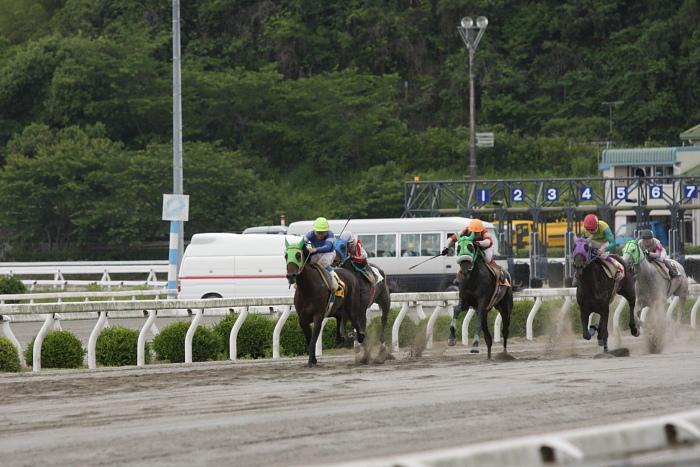 2010年5月29日(土) 高知競馬 4R 打越厩舎一同応援 復帰おめでとう!特別 C3-4 レース_a0077663_23491092.jpg