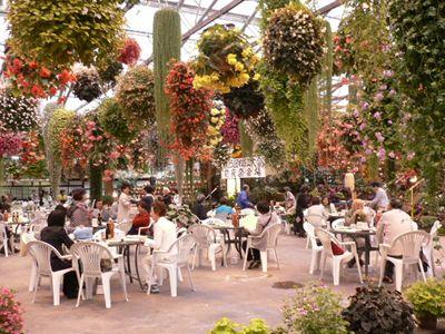 花園での前夜祭_a0108476_2283424.jpg