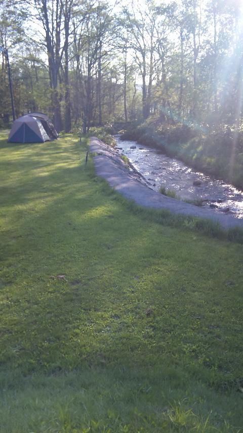 キャンプ場の朝_c0070412_623233.jpg