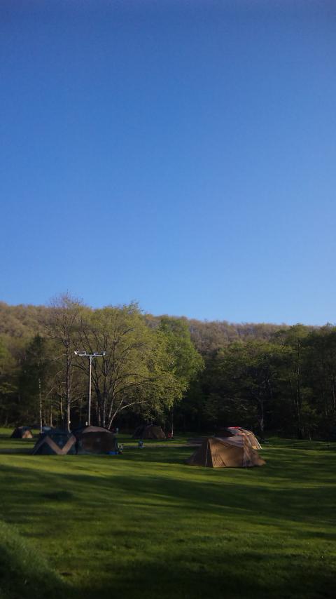 キャンプ場の朝_c0070412_623272.jpg