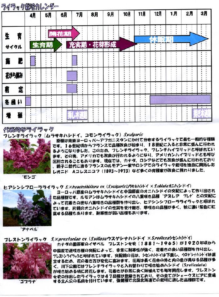 f0151515_18423815.jpg