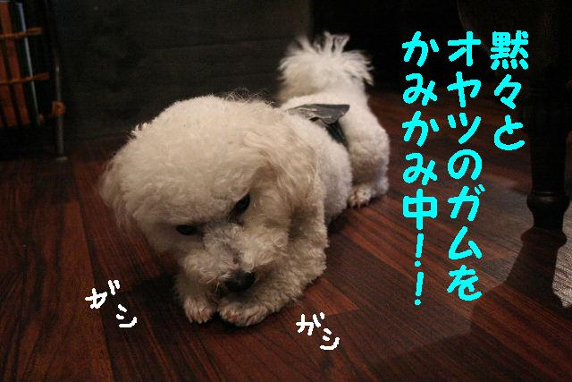 b0130018_9381827.jpg