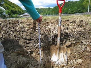 木質バイオマスの農業利用~第1弾~_e0002820_9573448.jpg