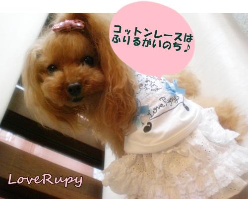 RUPY新作入荷しました。_b0084929_17303220.jpg