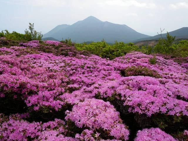 霧島・大幡山へ_b0161750_22245954.jpg