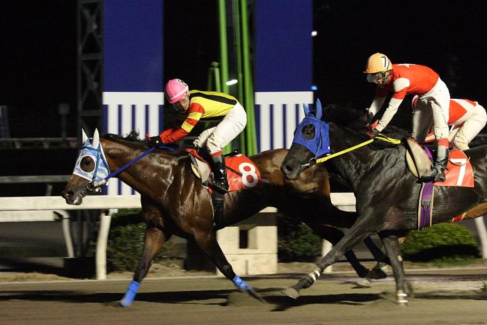2010年5月30日(日) 高知競馬 9R 室戸びわ特別 C1-1 選抜馬_a0077663_22411389.jpg