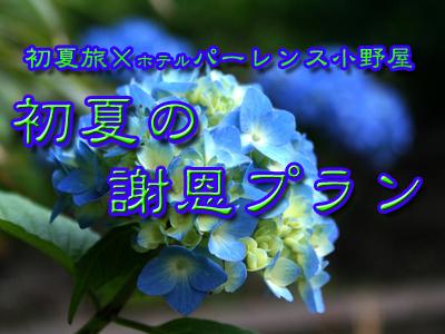 f0194664_17291455.jpg