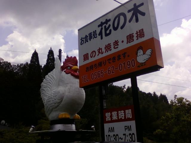 新鮮鶏肉_d0147165_18494075.jpg