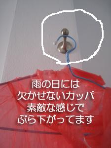 f0144385_1652366.jpg