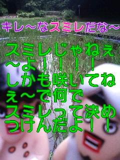 f0236990_20504183.jpg