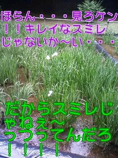 f0236990_20511245.jpg