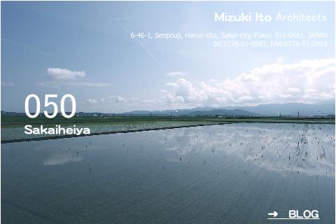 坂井平野のこんな風景が大好きです!_f0165030_18472552.jpg