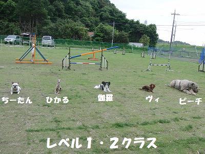 f0186040_2219767.jpg