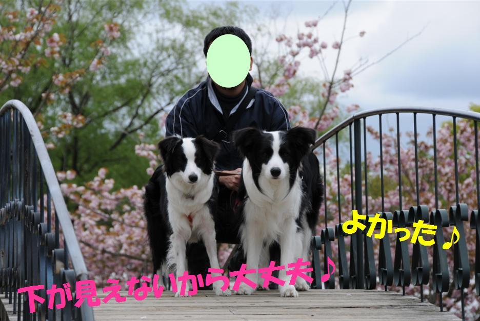 c0147241_22513495.jpg