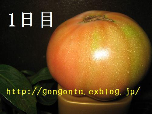 e0085147_1263752.jpg
