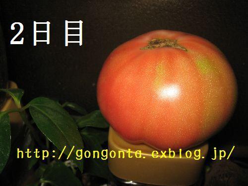 e0085147_127029.jpg