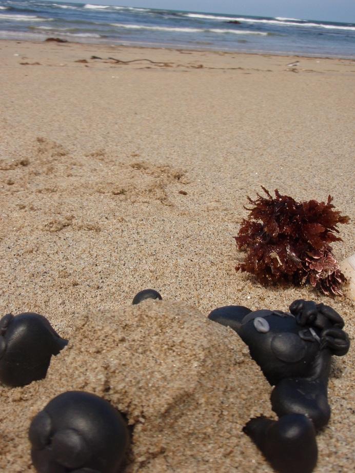 なつおさん、砂に抱かれて。。。♪ ~素敵な週末の過ごし方~_f0096569_21344017.jpg
