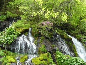 川俣渓谷を歩いてきました_f0141975_12111618.jpg