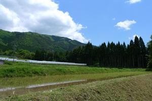 『越畑フレンドパークまつばら』(蕎麦)さん_b0142989_18452914.jpg