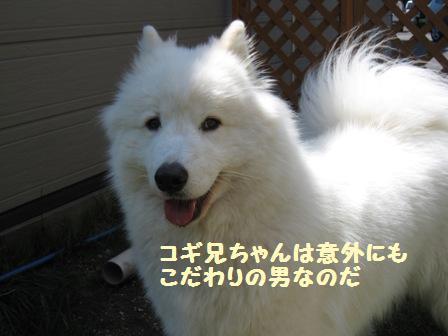 f0212597_16135484.jpg
